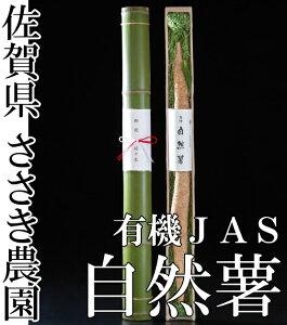 【クール便】自然薯 贈答用 竹筒入れ 1本(約1.2kg前後) 有機JAS (佐賀県 ささき農園) 産地直送