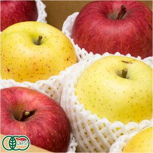【家庭用】 有機 りんご 3種2色セット 3kg箱 有機JAS (青森県 晴香園 福田秀貞) 産地直送