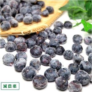 【クール冷凍便】冷凍ブルーベリー 生食用 1kg (群馬県 月夜野ブルーベリー)