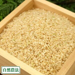 【令和2年度産】河原さんのお米 玄米10kg 自然農法(岡山県 河原農園) 産地直送