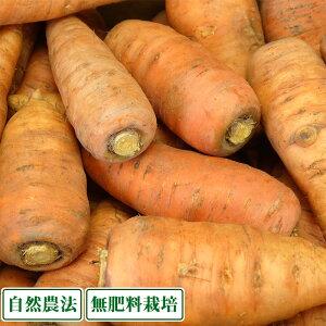 土付きにんじん 5kg 自然農法 (兵庫県淡路島 花岡農恵園) 産地直送