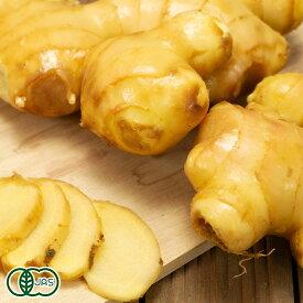 限界突破ショウガ(土付き) 2kg 有機JAS (高知県 ラッキー農園) 生姜 しょうが 産地直送
