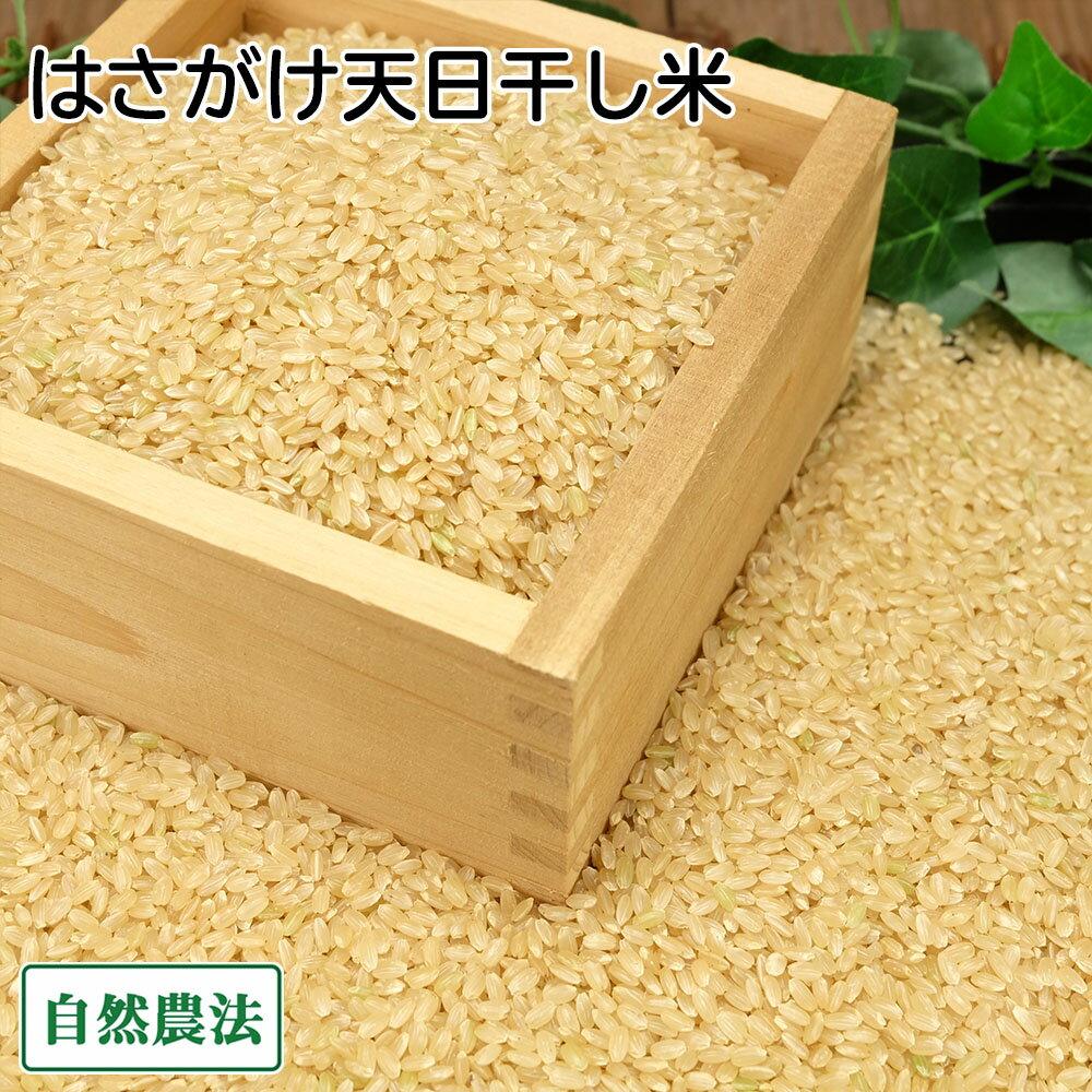 [感謝セール]田口さんちのはさがけ天日干し米(つがる) 玄米 10kg 無農薬 (青森県 だんごっこファーム) 産地直送