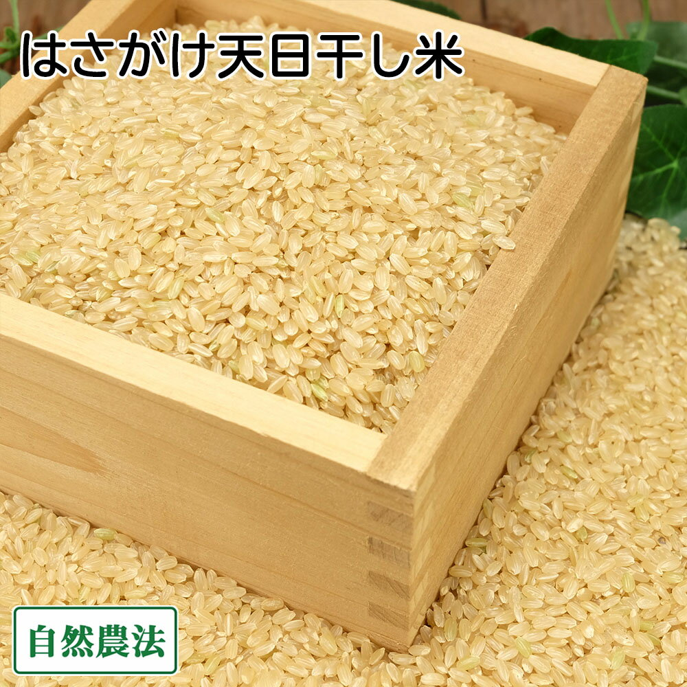[感謝セール]田口さんちのはさがけ天日干し米(あきた) 玄米 5kg 無農薬 (青森県 だんごっこファーム) 産地直送