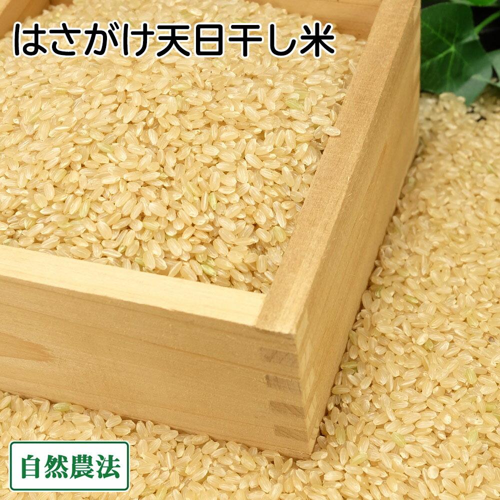 [感謝セール]田口さんちのはさがけ天日干し米(むつ) 玄米 10kg 無農薬 (青森県 だんごっこファーム) 産地直送