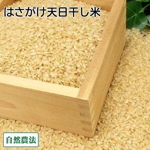 【令和2年度産】田口さんちのはさがけ天日干し米(むつ) 玄米 10kg 自然農法 (青森県 だんごっこファーム) 産地直送