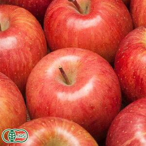 早生りんご(赤) A品 5kg箱 特別栽培(無・無) (青森県 北上農園) 産地直送