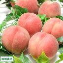 【予約商品】山形白桃(晩生種) 2kg 特別栽培 (山形県 森谷農園) 産地直送