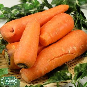【規格外】 にんじん 5kg 自然農法 (青森県 南風農園) 産地直送 クール便選択可能