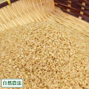 【令和2年度産】あきたこまち 玄米5kg 自然農法 (青森県 アグリメイト南郷) 産地直送