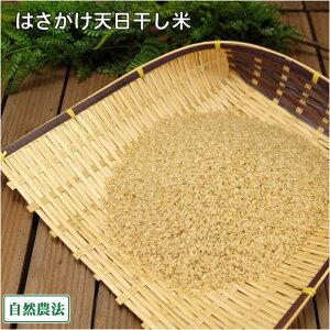 【令和元年度産】田口さんちのはさがけ天日干しもち米(アネコもち) 玄米 5kg 自然農法 (青森県 だんごっこファーム) 産地直送