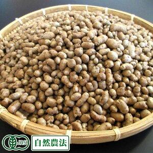 有機 むかご 1kg 有機JAS・自然農法 (熊本県 那須自然農園) 産地直送