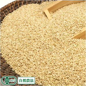 【令和元年度産】金のいぶき 玄米 10kg 有機JAS 自然農法 (宮城県 仙台たんの農園) 産地直送