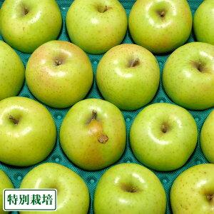 【訳あり】 無・無 王林 12kg箱 特別栽培 (青森県 北上農園) 産地直送