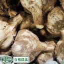 やまもと農産 【予約商品】田子町産土付き 新 生にんにく M〜Lサイズ混合 1kg(おまけ付き) 自然農法 (青森県 やまもと農産) 産地直送