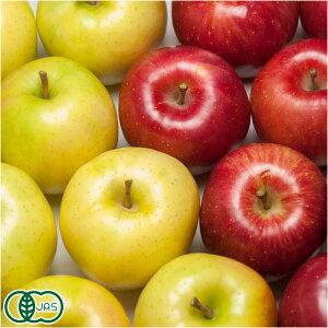 【予約商品】 有機 りんご 2色セット A品(贈答用) 3kg箱 有機JAS (青森県 北上農園) 産地直送