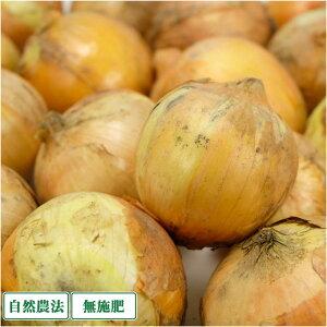 【サイズ混合・訳あり】 玉ねぎ 5kg 自然農法 無肥料 (兵庫県淡路島 花岡農恵園) 産地直送