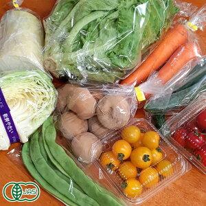 【クール冷蔵便】せっちゃんの有機野菜セット 有機JAS (青森県 自然食ねっと青森) 産地直送