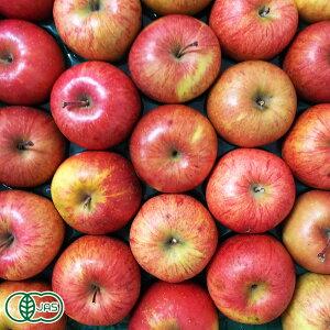 【家庭用】有機 りんご(赤) 5kg箱 有機JAS (青森県 北上農園) 産地直送
