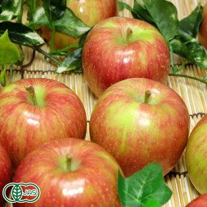 【家庭用・小玉】 有機りんご(赤) 8kg 有機JAS (青森県 北上農園) 産地直送