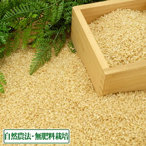 【令和2年度産】はるみ 玄米 5kg 自然農法 (徳島県 久米実) 産地直送