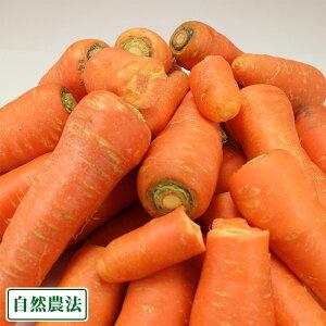 【B品・訳あり】 にんじん 洗い 5kg 自然農法 (青森県 アグリメイト南郷) 産地直送