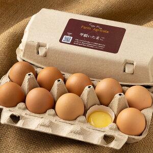 平飼い有精卵 10個×1パック (北海道 Farm Agricola) 産地直送 たまご