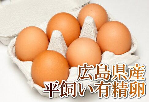 平飼い有精卵 6個×6パック(広島県 はやしなちゅらるふぁーむ)送料無料・産地直送・健康たまご