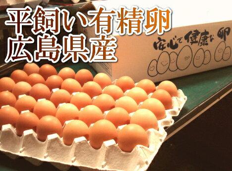 平飼い有精卵 80個(広島県 はやしなちゅらるふぁーむ)送料無料・産地直送・健康たまご
