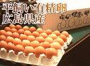 平飼い有精卵 40個(広島県 はやしなちゅらるふぁーむ)送料無料・産地直送・健康たまご