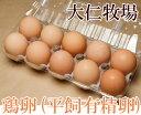平飼有精卵 1パック(10個)×8箱(静岡県 大仁牧場)健康有精卵・送料無料・産地直送