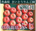 [ポイント5倍] ふじ 家庭用10kg箱(28〜46玉)(青森県 さいとうりんご園)特別栽培減農薬りんご・送料無料・産地直送・お徳用