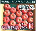 [ポイント5倍] ふじ 訳あり10kg箱(28〜46個)(青森県 さいとうりんご園)特別栽培減農薬りんご・送料無料・産地直送・お徳用