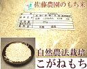 [28年度産] もち米(こがねもち) 白米・玄米5kg(山形県 佐藤農園)無農薬餅米・送料無料・産地直送・ギフト・贈答