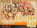 「ポイント10倍」 きたあかり 土付き人参セット 農薬不使用 (青森県 須藤農園) 10kg