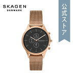 2021春の新作スカーゲンスマートウォッチハイブリッドレディースSKAGEN腕時計SKT3100DIANA公式2年保証