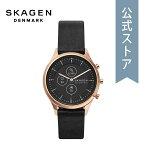 2021春の新作スカーゲンスマートウォッチハイブリッドレディースSKAGEN腕時計SKT3102DIANA公式2年保証