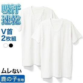 ルクール鹿の子 V首 半袖 Tシャツ 2枚 セット メンズ 春夏 肌着 下着 インナー 消臭 吸汗 速乾 紳士 男性 綿混 Vネック 父の日 ギフト プレゼント ホワイト/ブラック M/L/LL L0601E-R