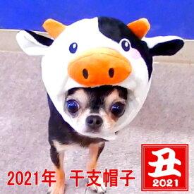 2021年 干支 モーモー帽子 │ チワワ 小型犬 月 年始 年賀状 うし 牛 ウシ 丑 犬 ペット 帽子 キャップ 犬用 おしゃれ 子犬 パピー かぶりもの コスプレ 正月