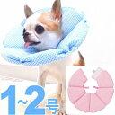 【チワワ エリザベスカラー】エリザベスカラー ブリリアント ギンガム【小型犬 ペット 去勢 避妊 手術 介護】