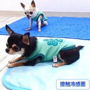 クマ柄接触冷感マットワイド│チワワ小型犬犬ペットクールひんやり夏春夏クールマットひんやりハウスひんやりベッドひんやりマットひえ冷え冷えクールマットクールシーツクールベッド冷却マット保冷接触冷感猛暑