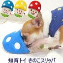 知育トイ きのこスリッパ | チワワ 犬 おもちゃ 小型犬 ペット ぬいぐるみ 知育 知育玩具 音が鳴る 鳴き笛 鳴笛 子犬…