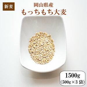 令和元年産 大麦 国内産 もっちもち大麦 1.5kg(500g×3袋) 岡山県産 ポイント消化 送料無料 雑穀・雑穀米 古代米 食品 安い お試し 2kg以下 もち麦の代わりに 美容・ダイエット・健康 メール便