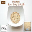 新麦 令和元年産 大麦 国内産 もっちもち大麦 950g 1袋 チャック付き 岡山県産 ポイント消化 送料無料 500円ぽっきり …