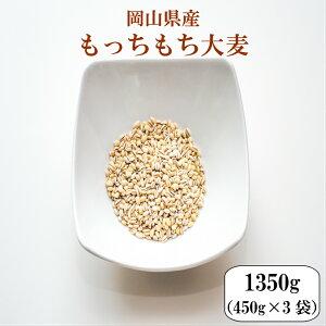 令和元年産 大麦 国産 もっちもち大麦 1350g(450g×3袋)岡山県産 ポイント消化 送料無料 雑穀・雑穀米 古代米 食品 安い お試し 2kg以下 もち麦の代わりに 美容・ダイエット・健康 メール便