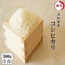 新米 令和元年産 高知県産コシヒカリ 300g(2合)1袋 ポイント消化 送料無料 お試し お米 食品 安い 1kg以下 メール便