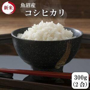 令和元年産 新米 ポイント消化 送料無料 お試し お米 食品 安い 1kg以下 魚沼産コシヒカリ 300g(2合)1袋 メール便