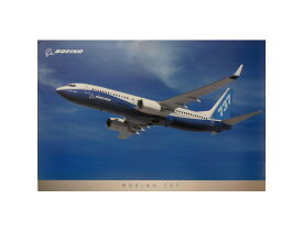 ボーイング 737 フライト ポスター