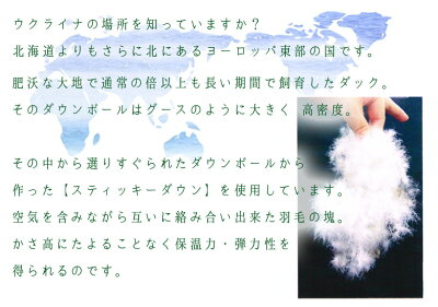 イワタ羽毛布団シルバーダックダウンシングルロング日本製iwata
