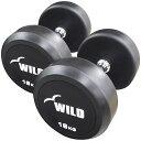 固定式ダンベル 16kg WF 2本セット[Slim Fit スリムフィット] 送料無料 ダンベル ウエイト 筋トレ トレーニング 腹筋 背筋 胸筋 上腕三…